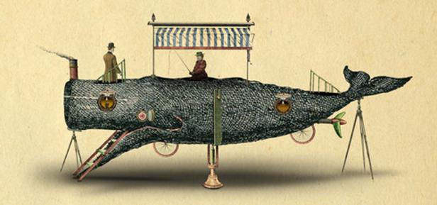 Hippo-aquatrip